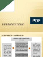 Apresentação do  propinoduto tucano feita pela assessoria técnica da bancada do PT na Alesp