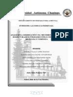 ANALIZAR LA GERMINACIÓN Y EL CRECIMIENTO DEL MAÍZ CEROSO Y DURO
