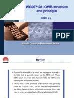 3WG007101 iGWB Hardware and Principle ISSUE 1.0