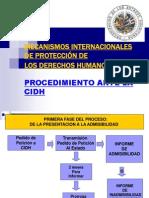 Procedimiento Comision 19 10 Final
