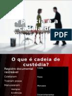 IQ 24092010 10h Cadeicustodia