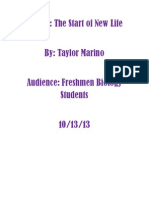 Taylor Marino TDD Final Draft