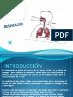 respiracin-130410025133-phpapp01.ppt