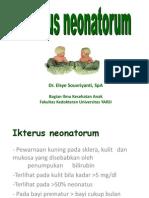 4._Hiperbilirubinemia[1]