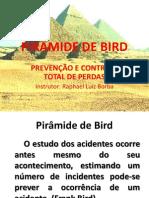 PIRÂMIDE DE BIRD