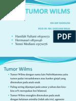 Tumor Wilms Pp