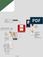 Sistem Kelenjar Endokrin Central