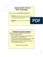 Power Point - Restriction Enzymes