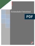 Estimulador Intestinal / Proyecto Final de la materia de Administración de Proyectos 2013-08