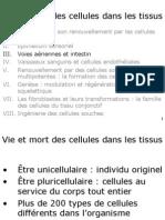 Cours Medecine Info Histologie 1 Voies Aeriennes Generalites