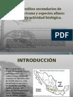 Congreso Costa Rica revisión#2