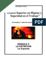 Modulo I-7 - La Extincion-Espuma