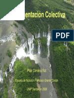 alimentacion colectiva_PilarCervera