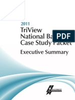 2011 TriView Executive Summary