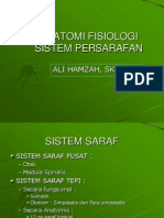 Anatomi Fisiologi Sistem Persarafan