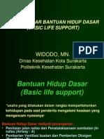 Bhd Bls Widodo, Mn