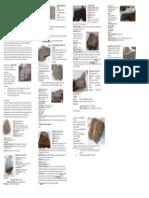 Resumen de Rocas de Petro