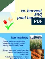 Dbt 14- Harvest & Postharvest