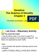 dna connection section 4