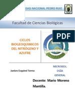 ciclos biogeoquímicos monografia