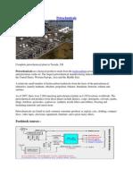 Petrochemicals.docx