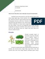 Agrobiologi Tgs 1