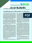 Leg Weakness Disorders in Poultry