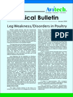 Leg Weakness Disorders in Poultry