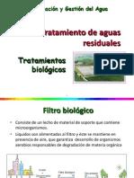 Tratamiento Biologico 14