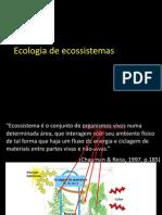 ecoecossistemas