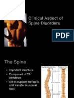 Clinical Aspect of Spine Palembang