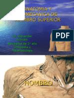 Anatomia y Biomecanica de Miembro Superior (Hombro)