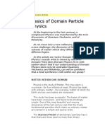 Basic Principles of Domain Particle Physics