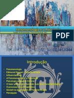 fenomenologiaeapsicologia-111101195833-phpapp02