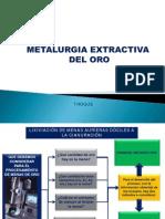Metalurgia Extractiva Del Oro Virtual (1)