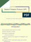 Analisis Profundo de SIP