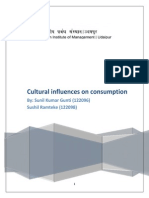 Cultural Influences on Consumption