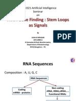 stem Loops