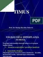 TIMUS P
