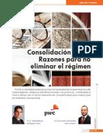 2013 01 Consolidacion Fiscal Ptos Finos