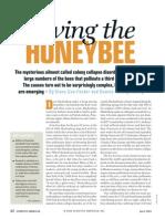 saving the honeybee