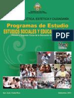 Social Es 2013