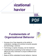 Organizational Behavior 1