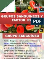 gruposanguneo-100113172325-phpapp02