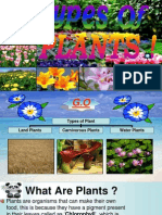 Class 5 Science, Types Of Plants(Plants PPT)