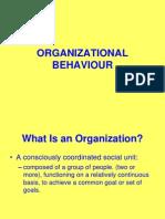 1 Organizational Behabiour.
