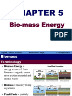 Ch5 Biomass