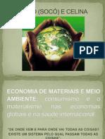 Economia de Materiais e Meio Ambiente