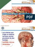 IRRIGACION DEL ENCEFALO.pptx