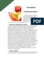 Sanatatea cardiovasculara